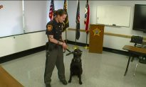 Protecting the Protector: Children Step in to Help K-9 Unit