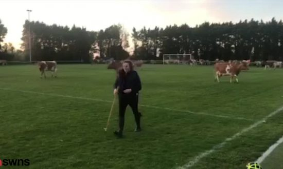 Football Match Abandoned After Bizarre Pitch Invasion