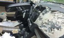 Bear Gets Stuck in Woman's Car, Causes Astounding Damage