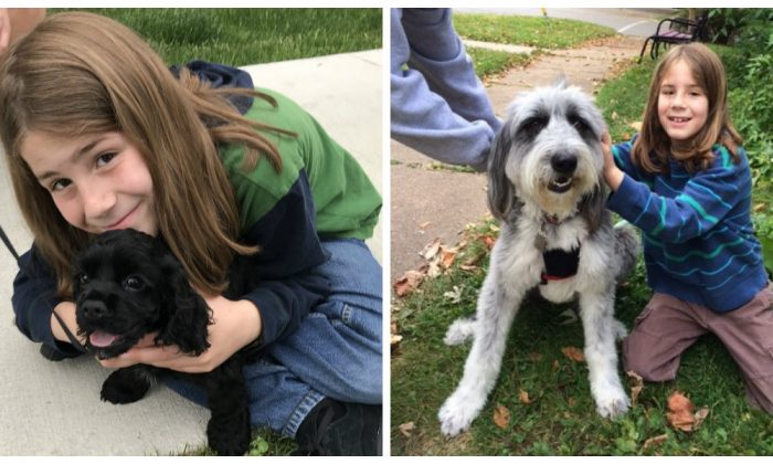 9-year-old asks strangers if he can pet their dog, and Twitter is loving the responses