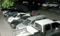 Monitoring Company Employee Helps Catch Teen Thieves