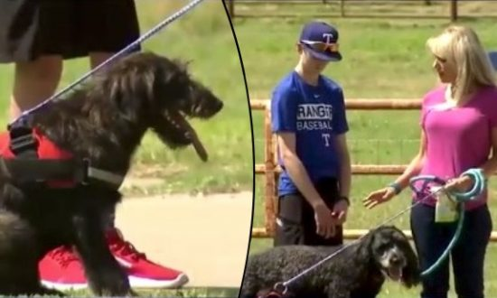 Sick Teen Gifted Life-Changing Service Dog by Former Cowboys Star
