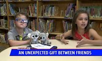 Stuffed Koala Sparks Unexpected Friendship Between Second Graders