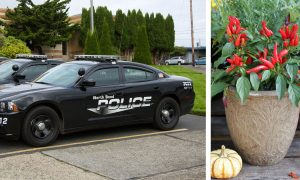 Police officers make an autistic boy smile after replacing his stolen pepper plants
