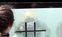 Navy Divers Give Insight Into Working Underwater