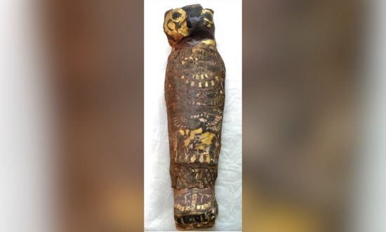 Scientists Scan 2,100-Year-Old 'Bird' Mummy–They Are Shocked to Discover What It Actually Is