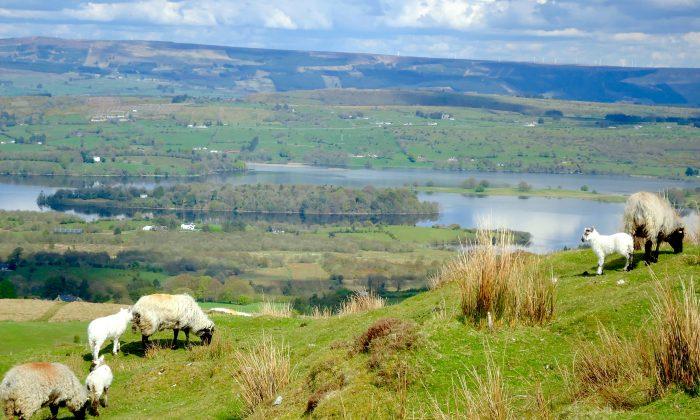 Broad Water bay as seen from Carrowkeel. (Susan James)