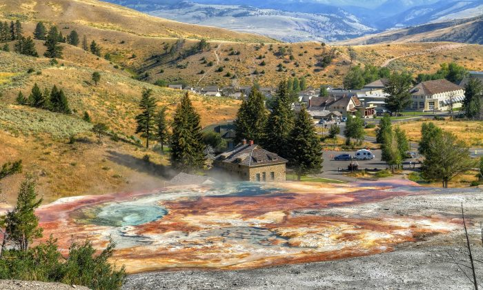Mammoth Hot Springs in Yellowstone National Park, Wyoming, with the Mammoth Hot Springs Hotel (R) in the background. (Shu-Hung Liu/Shutterstock)