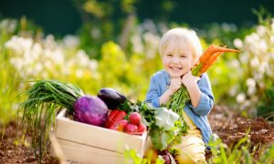 The Difference Between Heirlooms, Hybrids, GMOS and Gene Editing