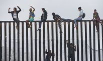 U.S. Tops Germany as Largest Receiver of New Asylum Requests