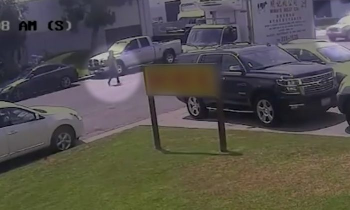 Purse Thief Rams SUV Into Woman and Drives Of. (Screenshot via Fox News).