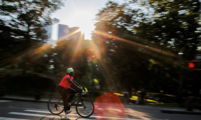 A woman rides a bike on a hot summer day in Central Park, Manhattan, New York, July 1, 2018.  (Reuters/Eduardo Munoz)