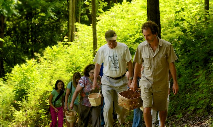 Alan Muskat leads hungry adventurers on a foraging tour. (Courtesy of No Taste Like Home)