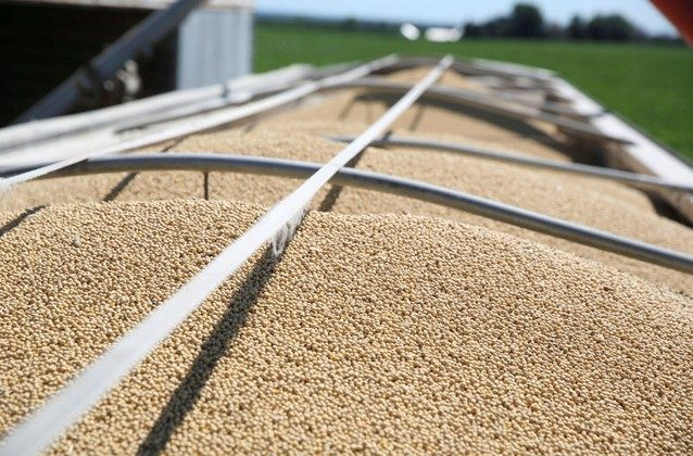 Soybeans fill a trailer at a farm in Buda, Illinois, U.S., on July 6, 2018.  (Daniel Acker/File Photo/Reuters)
