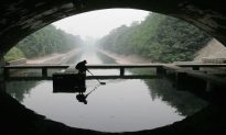 Oil Pollution Causes All Fish in Chinese Reservoir to Die