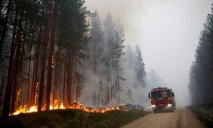 Severe Forest Fires Raging Across Drought-Stricken Sweden