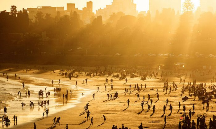 Summer Beach Sun