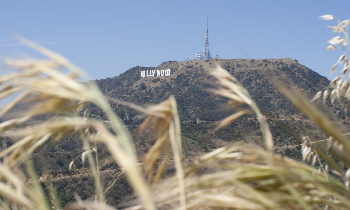 The Hollywood Sign is seen high above drying vegetation in Griffith Park on March 29, 2015 in Los Angeles, California. (Photo by David McNew/Getty Images)