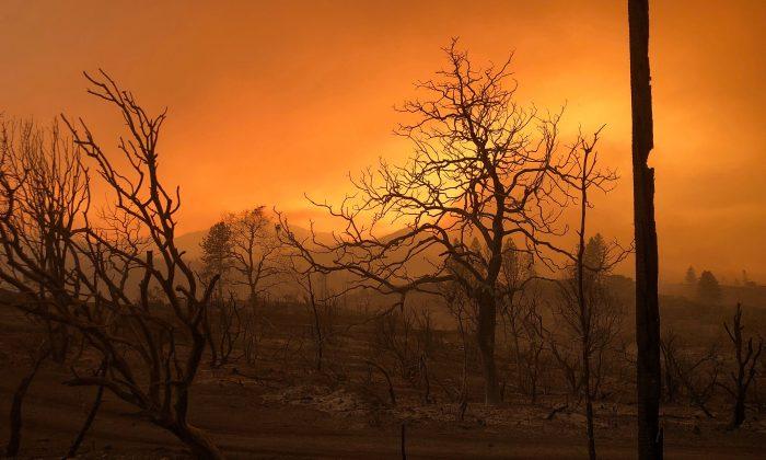 A blackened landscape is shown from wildfire damage near Keswick, California, U.S., July 27, 2018. (Reuters/Alexandria Sage)