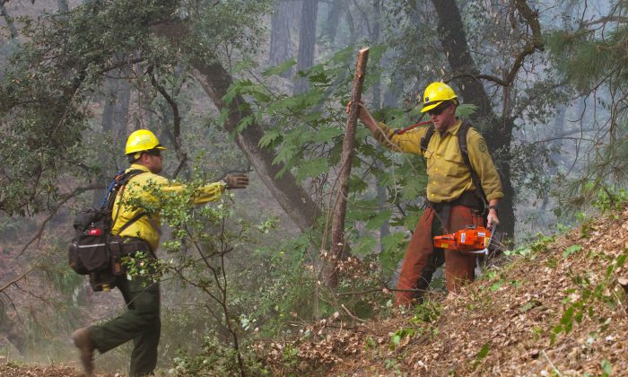 U.S. Forest Service firefighters clear brush to protect a house from the Carr Fire near Igo, California, U.S. July 29, 2018. (Reuters/Bob Strong)