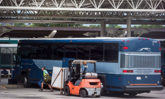 A worker removes luggage from a Greyhound bus upon arrival in Vancouver on July 9, 2018. (The Canadian Press/Darryl Dyck)