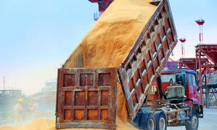 A truck unloading animal feed made from soybeans at a port in Nantong City, Jiangsu Province, China, on August 6, 2018. (AFP/Getty Images)
