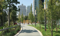 New Salesforce Park Opening