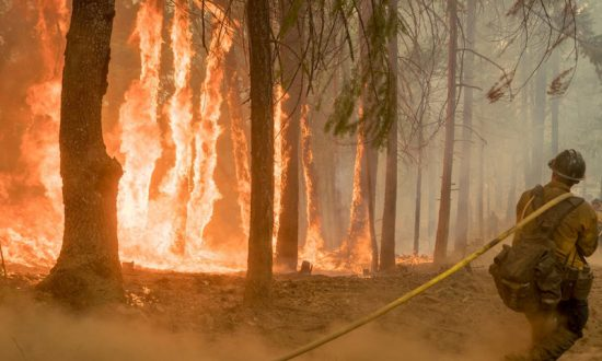 Smoke Gets in Your Eyes: Wildfires Sting California Park Tourism