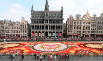 Brussels Flower Carpet Blossoms on Iconic Grand Place