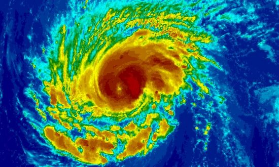 Florence Could Hit North Carolina with Flood of Pig Manure