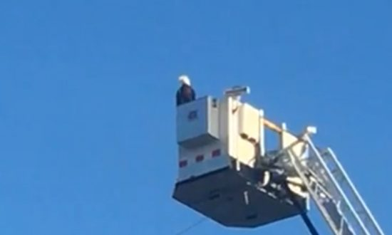 Bald Eagle Lands on Fire Truck's 9/11 Tribute Display