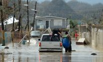 Millions of Bottles of Water Never Got to Maria Victims