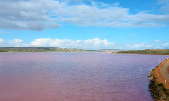 Photographer Captures Stunning Pink Lake in Western Australia