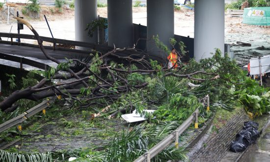 Hong Kong, Southern China Clean Up After Destruction by Super Typhoon Mangkhut