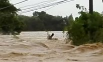 Video: Trapped in Typhoon Mangkhut's Raging Floodwaters