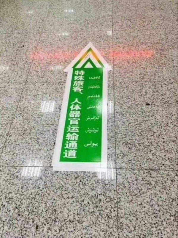 İnsan organlarının taşınması için Xinjiang havaalanında ekspres şerit