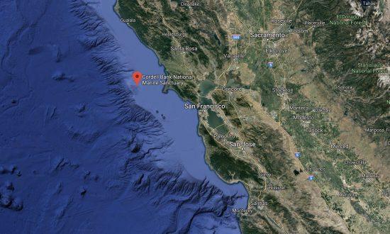 Noaa Studies Unexplored Seafloor Habitats Off Monterey Bay
