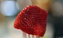 Australian Woman Charged With Contaminating Strawberries With Needles Following National 'Strawberry Crisis'