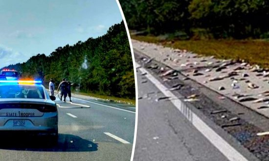 Dead Fish Cover I-40 as Florence Floodwaters Recede in North Carolina