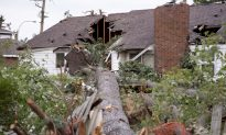 Ottawa Area Residents Take Stock of Tornado Rubble as Doug Ford Tours the Ruins