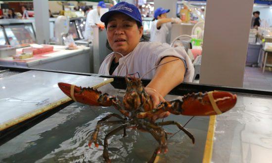 US-China Trade War Triggers Seafood Supply Chain Shake-Up