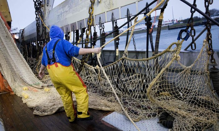 A fisherman on a Dutch fishing boat prepares electric pulse fishing nets during departure from the harbor of Den Helder on Jan. 18, 2018. (Niels Wenstedt/AFP/Getty Images)