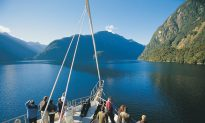 A New Zealand Adventure: Cruising in Fiordland National Park