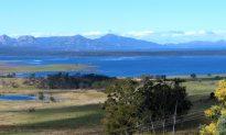 Tasmanian Buddhist and Community Leader Denies Links to Chinese Regime