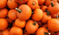Beyond Pumpkin Spice and Canned Puree, Here's How to Eat (and Drink) Pumpkin This Fall