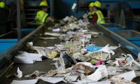 US Recyclers Begin Road to Recovery After China Bans Recyclables