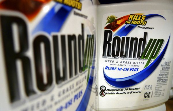 Judge may overrule jury's decision in Monsanto Roundup case