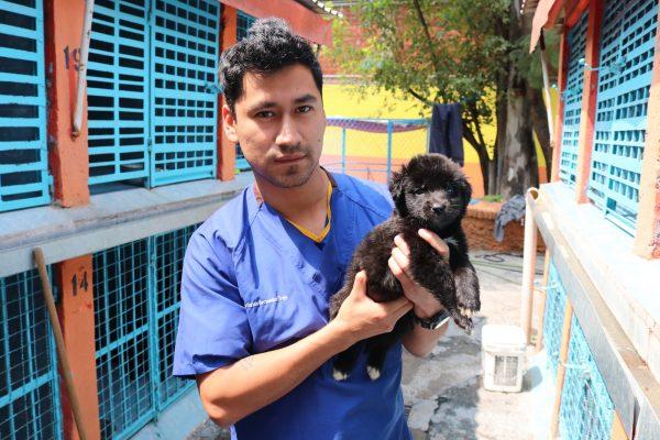 Veterinarian Jose Carlos Hernandez Trejo with a rescued puppy.