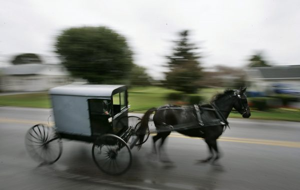 horse draws an Amish carriage