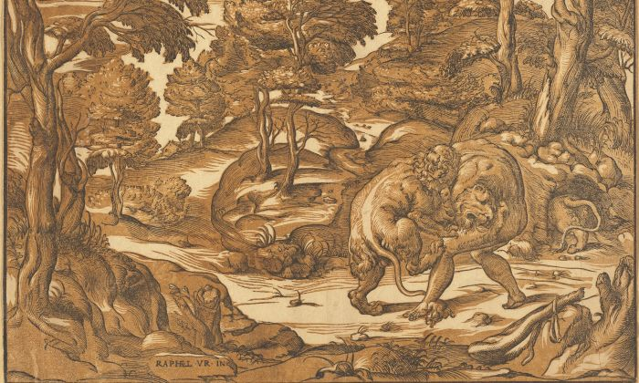 """Hercules and the Nemean Lion,"" circa 1560s, by Nicolò Boldrini, after Niccolò Vicentino (after Raphael school.) Chiaroscuro woodcut printed from two blocks in brown and black, 11 5/8 inches by 16 1/4 inches. Pepita Milmore Memorial Fund. (National Gallery of Art)"